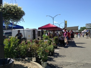 Friday Morning Market - Big Rapids!