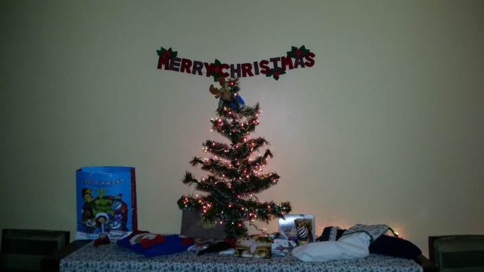 Our humble Christmas Tree