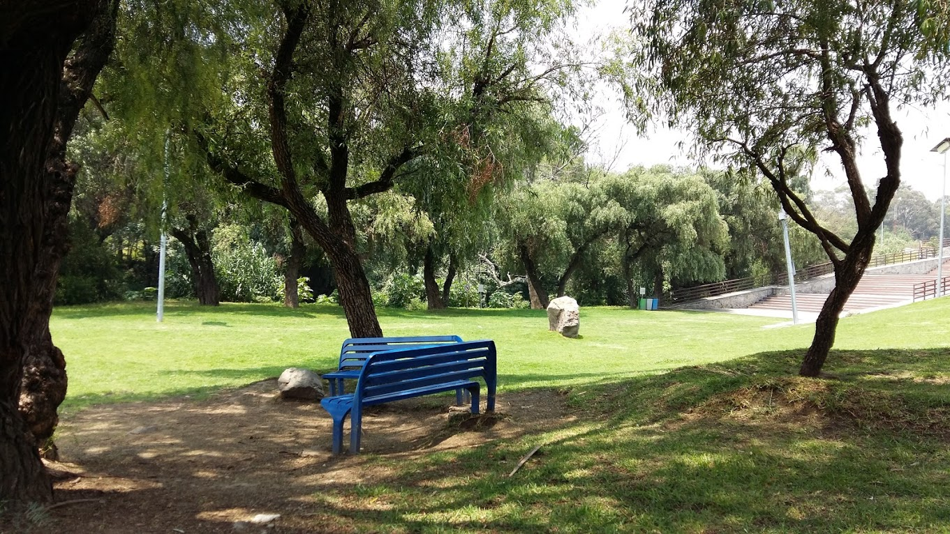 Went to the park in Puebla for a picnic