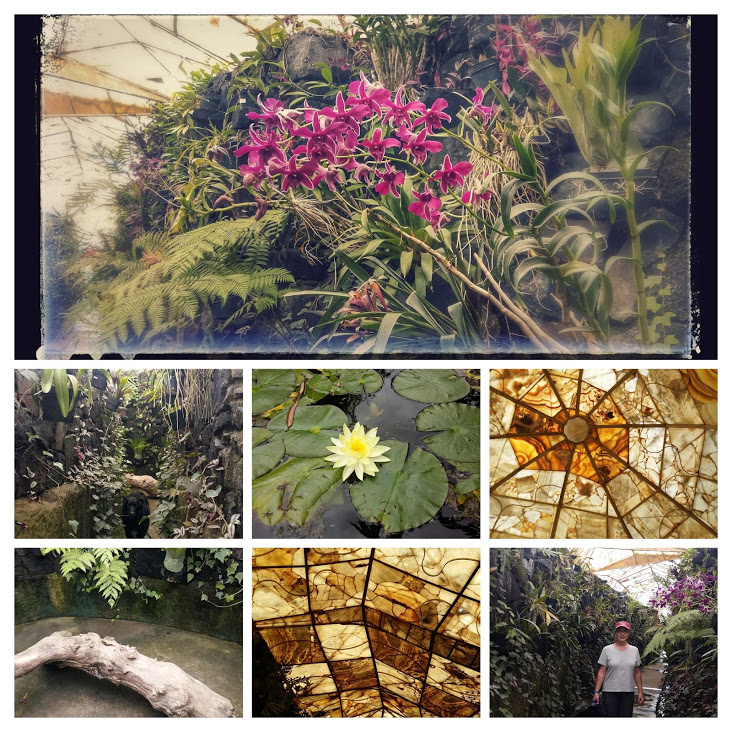 20160929_144509-collage-1