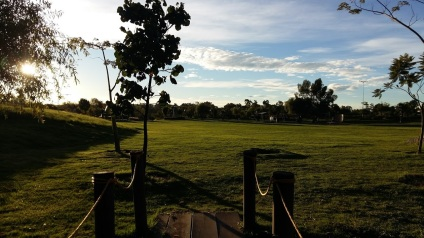 Open green space at the park