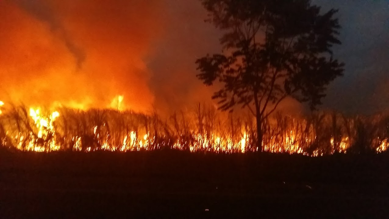 Evening burning of sugarcane fields so they can harvest the cane the next day.