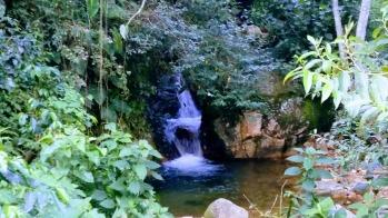 An amazing water fall